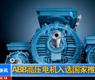 """ABB高压电机入选国家""""节能产品惠民工程""""推广目录-gongkong《行业快讯》2012年第15期(总第33期)"""