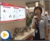 重庆伟岸测器产品介绍---2013 多国仪器仪表展会现场视频采访